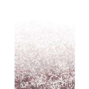 Folia - Plaster